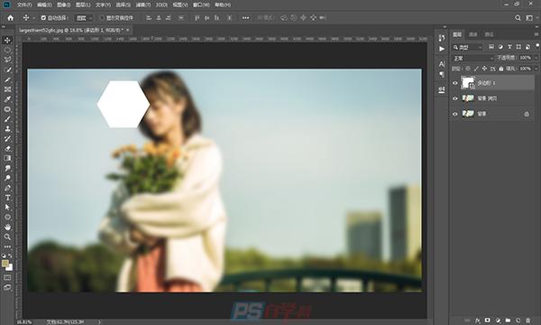PS制作照片拍立得效果的案例教程