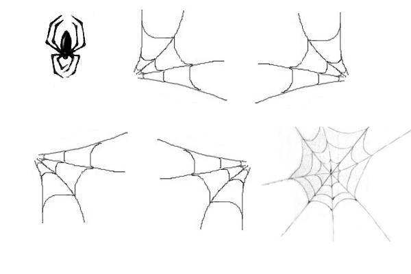 PS笔刷下载  蜘蛛、蜘蛛网PS笔刷