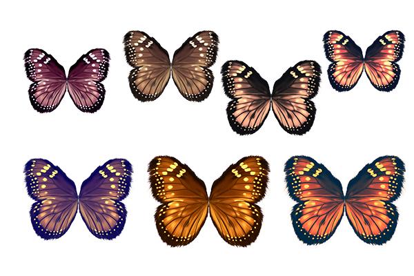PS笔刷下载  七彩蝴蝶翅膀图案(PNG透明图片格式)