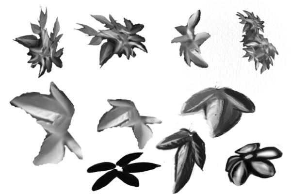 PS笔刷下载  春天的树叶、叶子效果笔刷