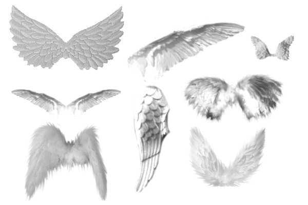 PS笔刷下载 天使翅膀、羽翼天使笔刷