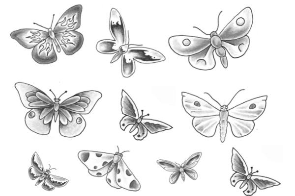 PS笔刷下载  漂亮的手绘蝴蝶图案笔刷