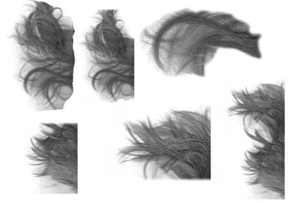 PS笔刷下载  真实头发、发丝效果笔刷