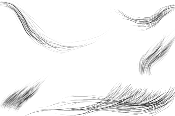 PS笔刷下载  鬃毛、细腻毛发、绒毛、手绘发髻笔刷