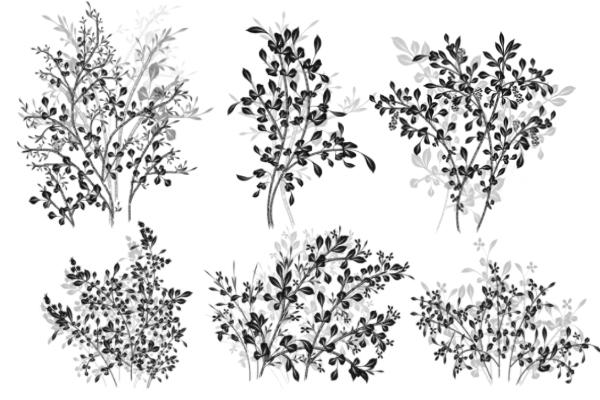 PS笔刷下载  绿叶枝条花纹图案、叶子印花笔刷
