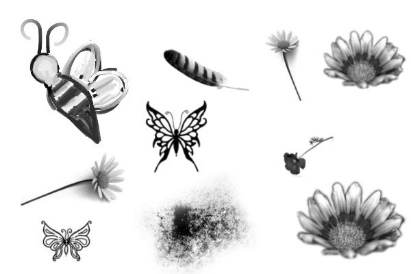 PS笔刷下载  蝴蝶、鲜花图案笔刷