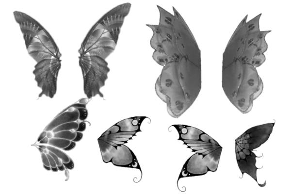 PS笔刷下载  6种蝴蝶昆虫翅膀笔刷
