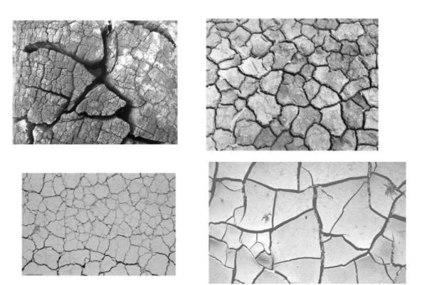 干旱裂纹、裂缝纹理PS笔刷