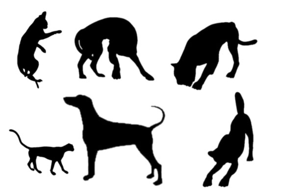 PS笔刷下载  动物剪影、轮廓图案笔刷
