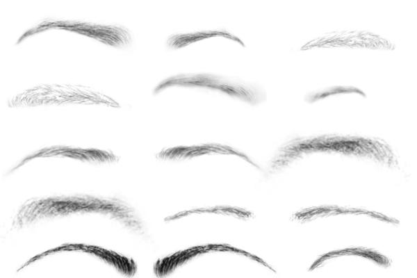 PS笔刷下载  眉毛、女士眉线笔刷素材