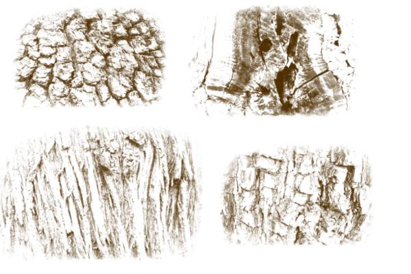 粗糙树干、树皮纹理图案PS笔刷