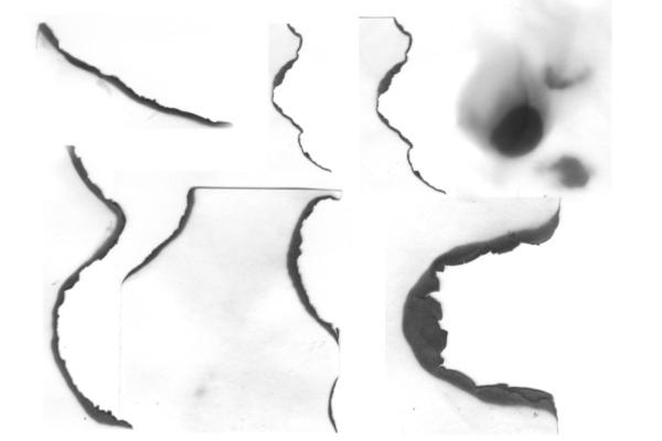 纸张燃烧、灼烧痕迹  PS笔刷下载