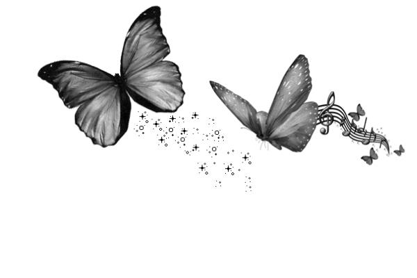 音乐蝴蝶装饰、梦幻蝴蝶星光  PS笔刷下载