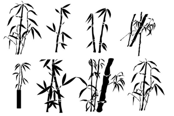 手绘水墨画毛竹、竹子图案PS笔刷