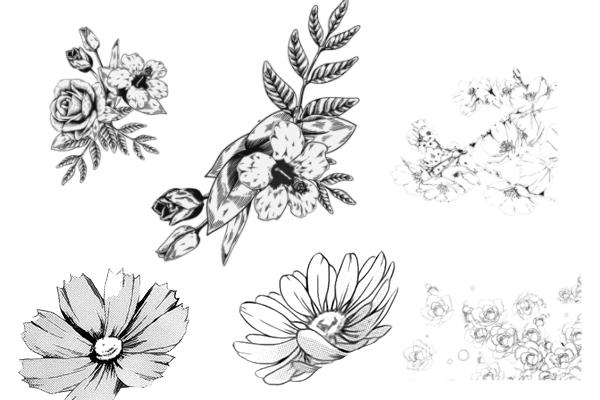 手绘植物、鲜花图案PS笔刷
