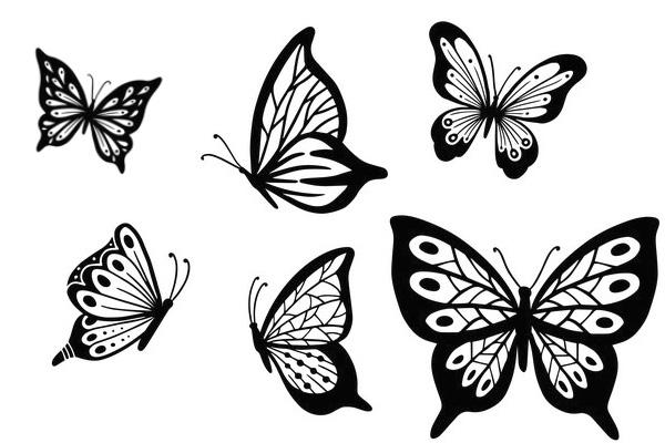 蝴蝶花纹、彩蝶图案PS笔刷
