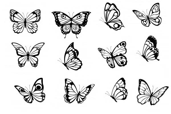 飞舞的蝴蝶、彩蝶翩翩、蝴蝶剪影图案PS笔刷