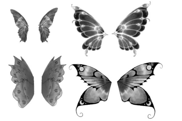 蝴蝶昆虫翅膀PS笔刷下载