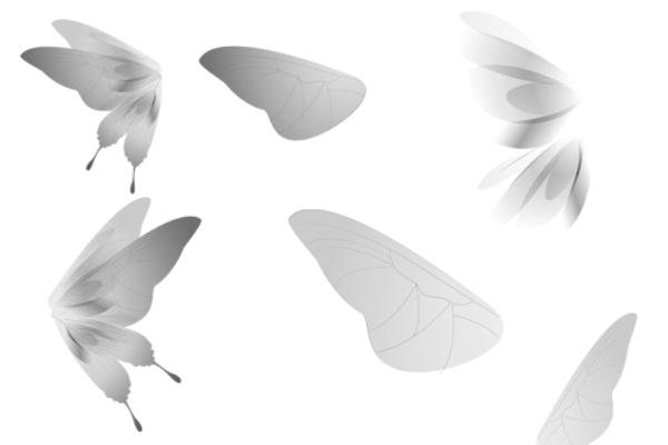 精灵仙子蝴蝶翅膀图案PS下载
