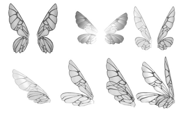 昆虫翅膀、蝴蝶翅膀图案PS笔刷